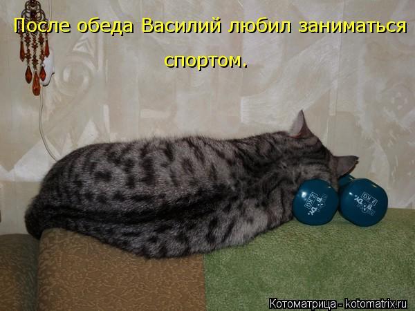 Котоматрица: После обеда Василий любил заниматься спортом.
