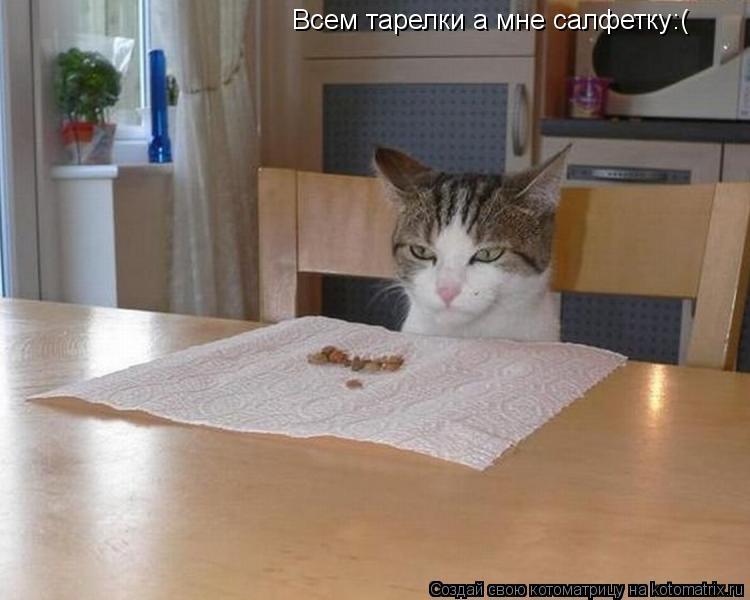 Котоматрица: Всем тарелки а мне салфетку:(