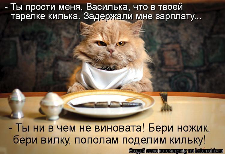 Котоматрица: - Ты прости меня, Василька, что в твоей тарелке килька. Задержали мне зарплату... - Ты ни в чем не виновата! Бери ножик,  бери вилку, пополам поде