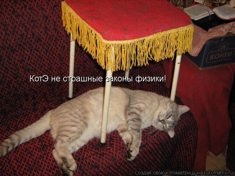 Котоматрица: КотЭ не страшные законы физики!