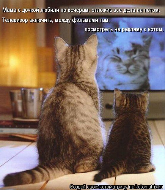 Котоматрица: Мама с дочкой любили по вечерам, отложив все дела на потом. Телевизор включить, между фильмами там, посмотреть на рекламу с котом.