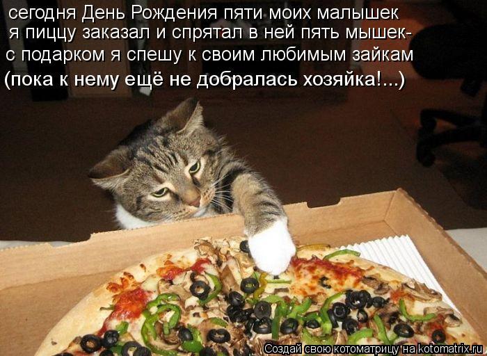 Котоматрица: сегодня День Рождения пяти моих малышек я пиццу заказал и спрятал в ней пять мышек- с подарком я спешу к своим любимым зайкам (пока к нему ещ