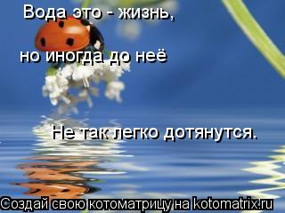 Котоматрица: Вода это - жизнь, но иногда до неё  Не так легко дотянутся.