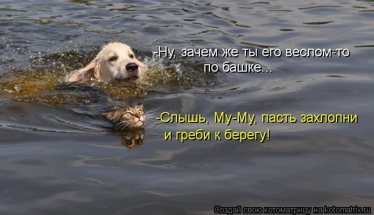 Котоматрица: -Ну, зачем же ты его веслом-то  по башке... -Слышь, Му-Му, пасть захлопни  и греби к берегу!