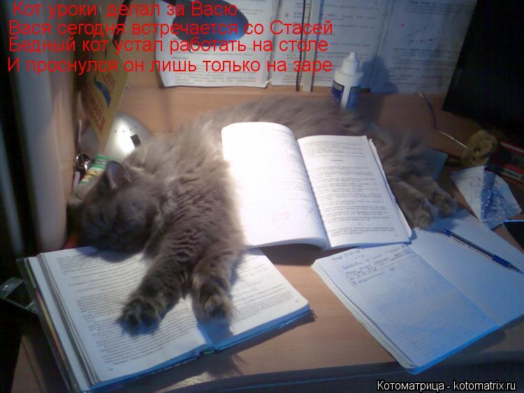 Котоматрица: Кот уроки делал за Васю Вася сегодня встречается со Стасей Бедный кот устал работать на столе И проснулся он лишь только на заре