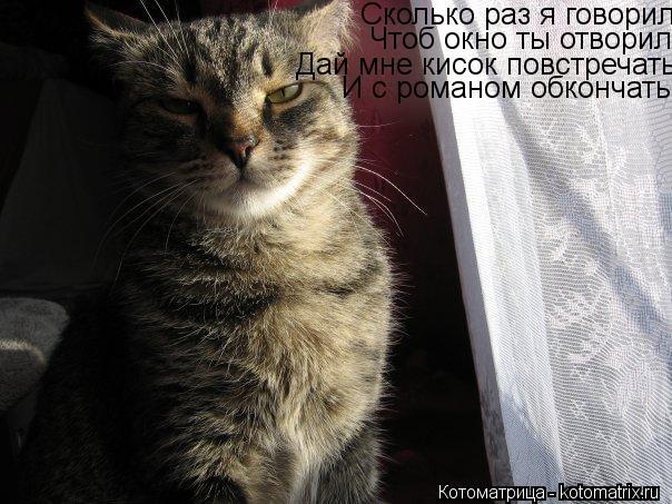Котоматрица: Сколько раз я говорил Чтоб окно ты отворил Дай мне кисок повстречать И с романом обкончать