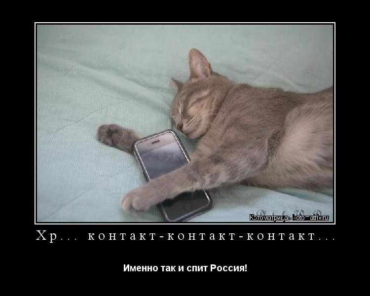 Котоматрица: Хр... контакт-контакт-контакт... Именно так и спит Россия!