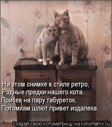 Котоматрица: Потомкам шлют привет издалека. Присев на пару табуреток, Родные предки нашего кота. На этом снимке в стиле ретро,