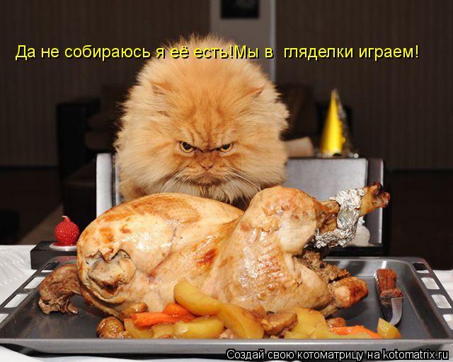 Котоматрица: Да не собираюсь я её есть!Мы в  гляделки играем!