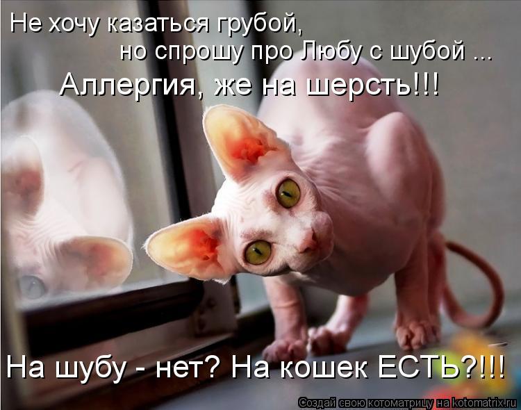 Котоматрица: Не хочу казаться грубой, но спрошу про Любу с шубой ... Аллергия, же на шерсть!!! На шубу - нет? На кошек ЕСТЬ?!!!