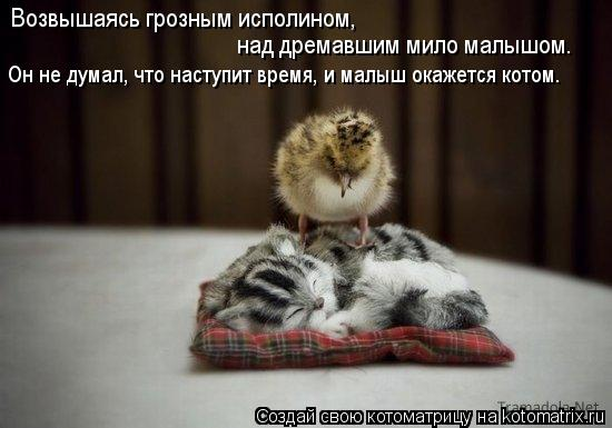 Котоматрица: Возвышаясь грозным исполином,  над дремавшим мило малышом. Он не думал, что наступит время, и малыш окажется котом.