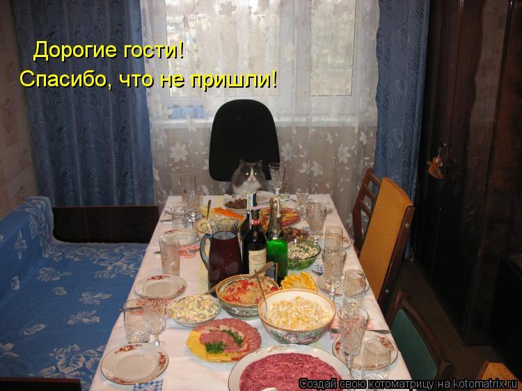 Котоматрица: Дорогие гости! Спасибо, что не пришли!