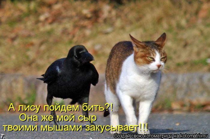 Котоматрица: А лису пойдем бить?! Она же мой сыр  твоими мышами закусывает!!!