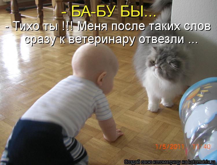 Котоматрица: - БА-БУ БЫ... - Тихо ты !!! Меня после таких слов сразу к ветеринару отвезли ...