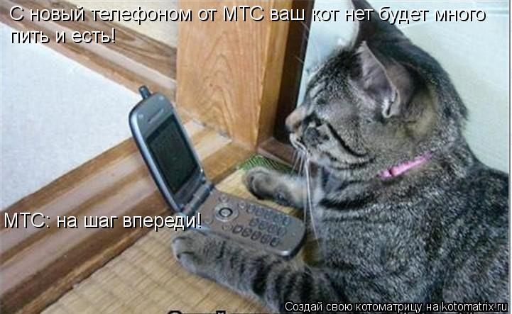 Котоматрица: С новый телефоном от МТС ваш кот нет будет много пить и есть! МТС: на шаг впереди!