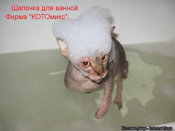"Котоматрица: Шапочка для ванной. Фирма ""КОТОмикс""."