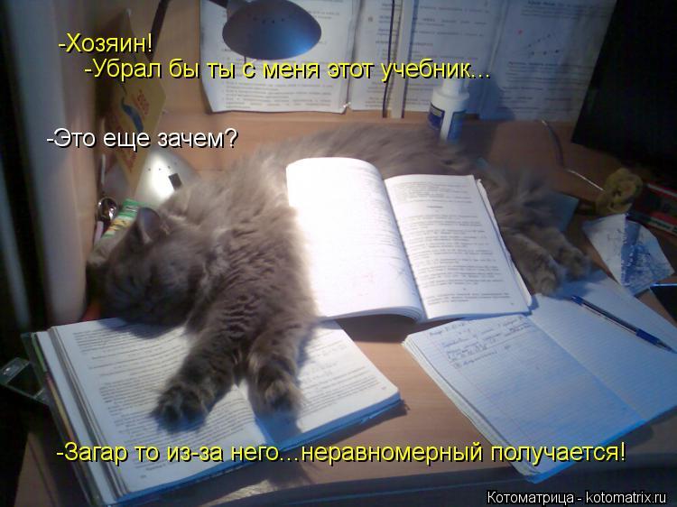 Котоматрица: -Хозяин! -Убрал бы ты с меня этот учебник... -Это еще зачем? -Загар то из-за него...неравномерный получается!