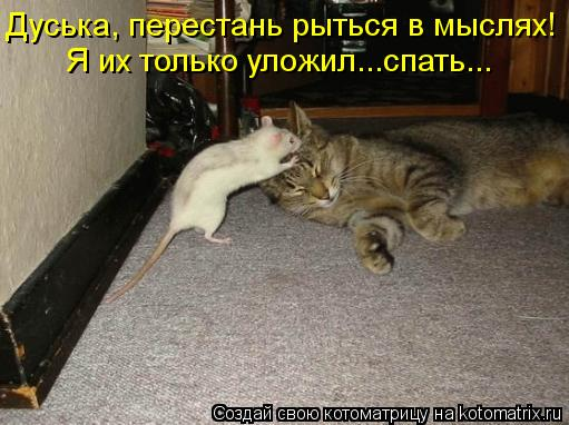 Котоматрица: Я их только уложил...спать... Дуська, перестань рыться в мыслях!
