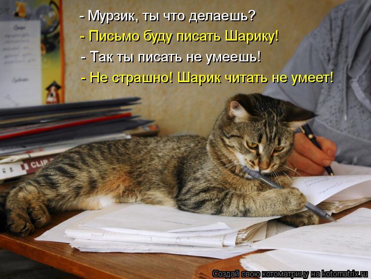 Котоматрица: - Мурзик, ты что делаешь? - Письмо буду писать Шарику! - Так ты писать не умеешь! - Не страшно! Шарик читать не умеет!