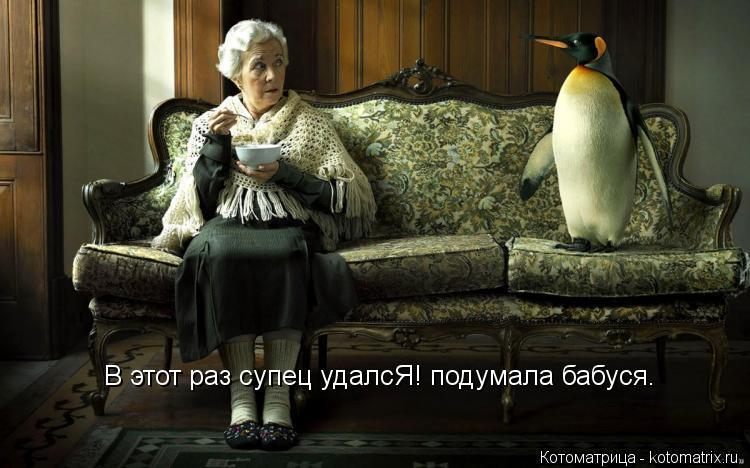 Котоматрица: В этот раз супец удалсЯ! подумала бабуся.