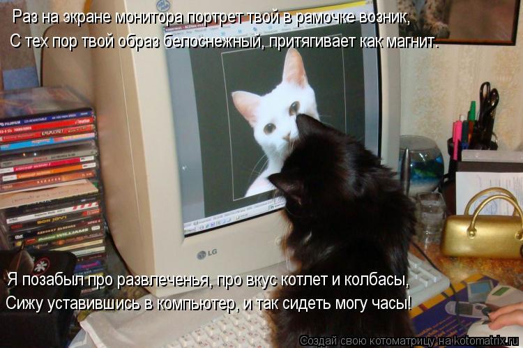 Котоматрица: Раз на экране монитора портрет твой в рамочке возник, С тех пор твой образ белоснежный, притягивает как магнит. Я позабыл про развлеченья, п