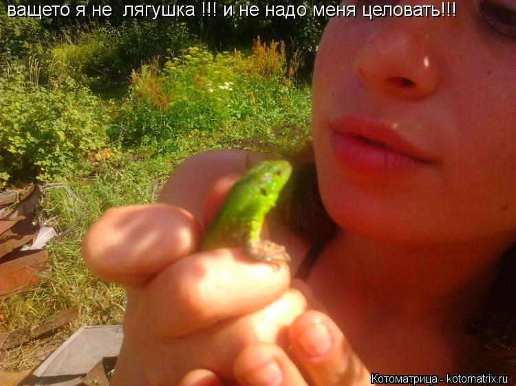 Котоматрица: ващето я не  лягушка !!! и не надо меня целовать!!!