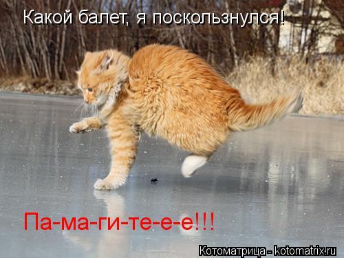 Котоматрица: Какой балет, я поскользнулся! Па-ма-ги-те-е-е!!!