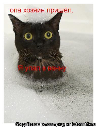 Котоматрица: опа хозяин пришёл. Я упал в ванну