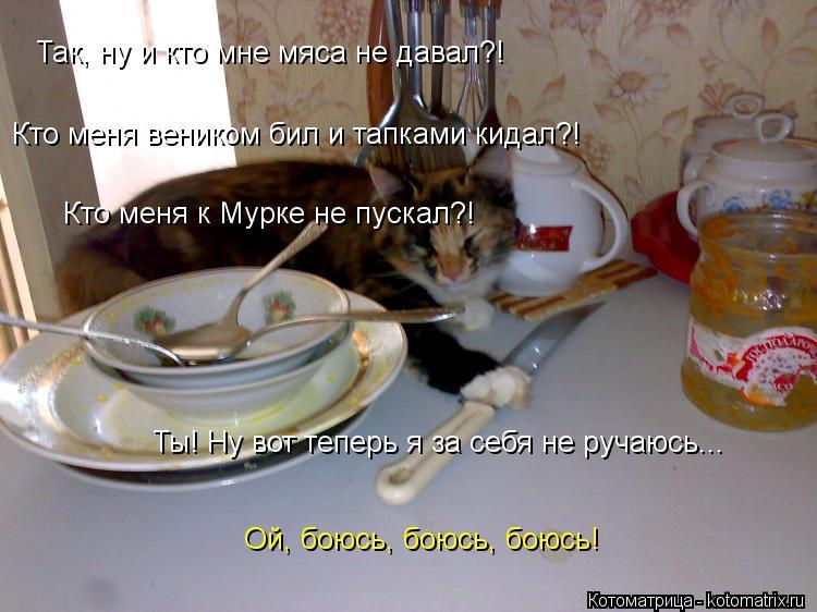 Котоматрица: Так, ну и кто мне мяса не давал?! Кто меня веником бил и тапками кидал?! Кто меня к Мурке не пускал?! Ты! Ну вот теперь я за себя не ручаюсь... Ой, б