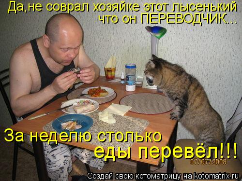 Котоматрица: Да,не соврал хозяйке этот лысенький что он ПЕРЕВОДЧИК... За неделю столько  еды перевёл!!!