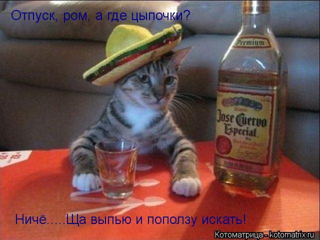Котоматрица: Отпуск, ром, а где цыпочки? Ничё.....Ща выпью и поползу искать!