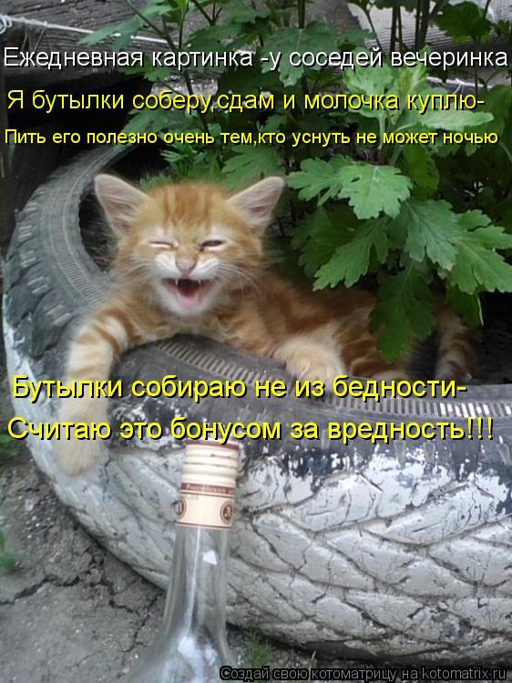 Котоматрица: Ежедневная картинка -у соседей вечеринка Я бутылки соберу,сдам и молочка куплю- Пить его полезно очень тем,кто уснуть не может ночью Бутылк