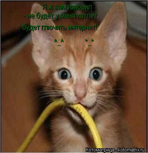 Котоматрица: Я ж вам говорил  - не будет у меня котлет будет глючить интернет!  ^_^            *_*