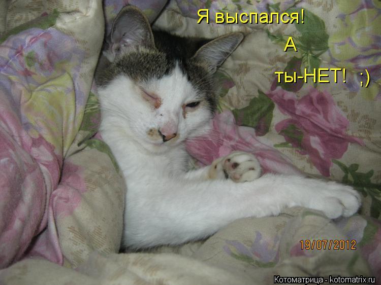 Котоматрица: Я выспался! А ты-НЕТ! ;)