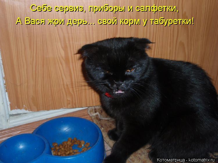 Котоматрица: Себе сервиз, приборы и салфетки, А Вася жри дерь... свой корм у табуретки!