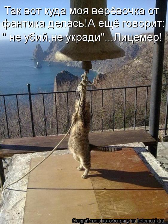 """Котоматрица: Так вот куда моя верёвочка от фантика делась!А ещё говорит: """" не убий,не укради""""...Лицемер!"""