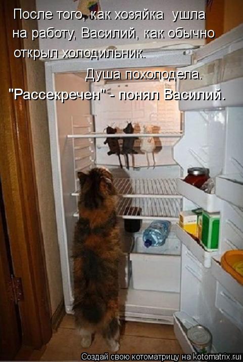 """Котоматрица: """"Рассекречен"""" - понял Василий. После того, как хозяйка  ушла на работу, Василий, как обычно открыл холодильник. Душа похолодела."""