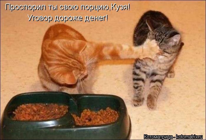 Котоматрица: Проспорил ты свою порцию,Кузя! Уговор дороже денег!