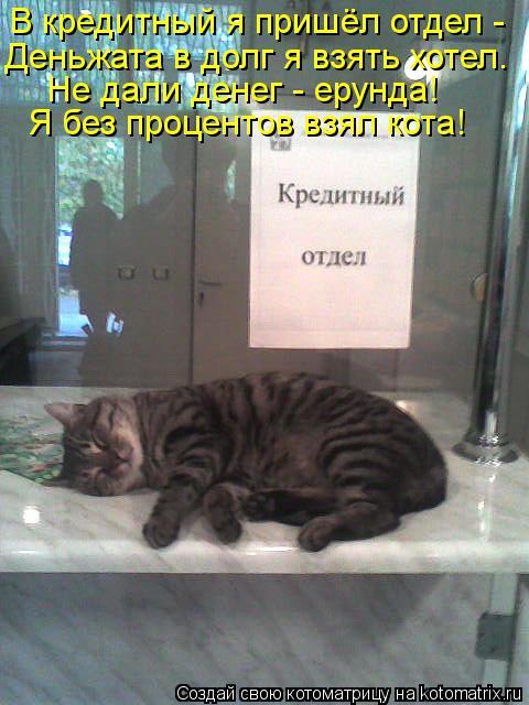 Котоматрица: В кредитный я пришёл отдел -  Деньжата в долг я взять хотел. Не дали денег - ерунда! Я без процентов взял кота!