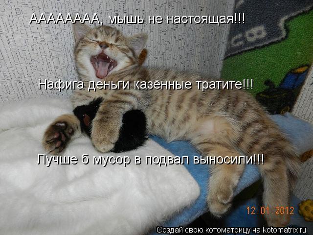 Котоматрица: АААААААА, мышь не настоящая!!! Нафига деньги казённые тратите!!!  Лучше б мусор в подвал выносили!!!