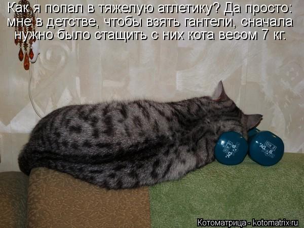 Котоматрица: Как я попал в тяжелую атлетику? Да просто: мне в детстве, чтобы взять гантели, сначала  нужно было стащить с них кота весом 7 кг.