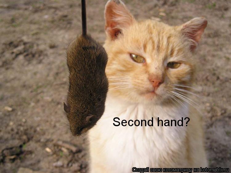 Котоматрица: Second hand?
