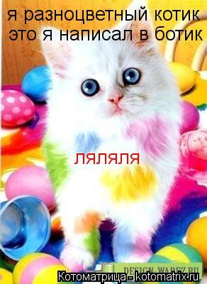Котоматрица: я разноцветный котик это я написал в ботик ляляля