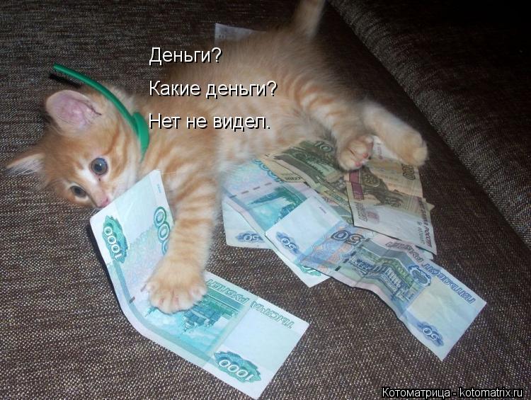Котоматрица: Деньги?   Какие деньги?   Нет не видел.