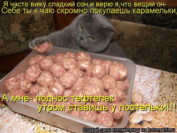Котоматрица: Я часто вижу сладкий сон,и верю я,что вещий он- Себе ты к чаю скромно покупаешь карамельки, А мне- поднос тефтелек утром ставишь у постельки!!!