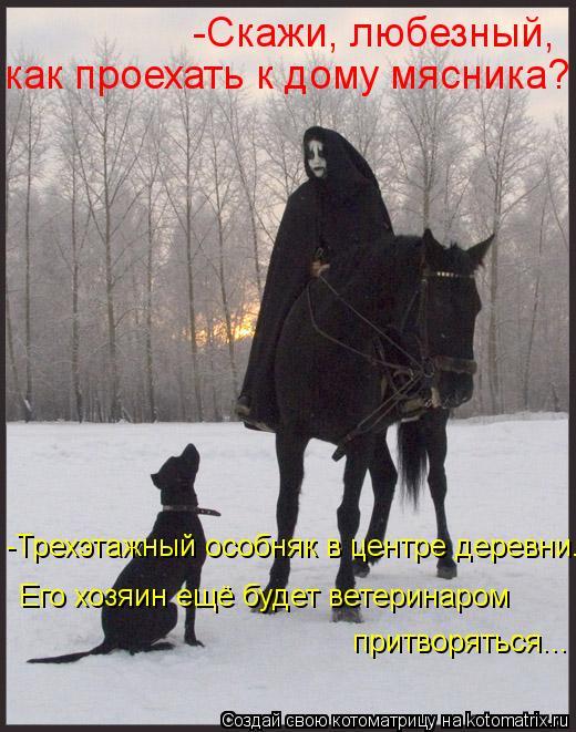 Котоматрица: -Скажи, любезный,  как проехать к дому мясника? -Трехэтажный особняк в центре деревни. Его хозяин ещё будет ветеринаром притворяться...