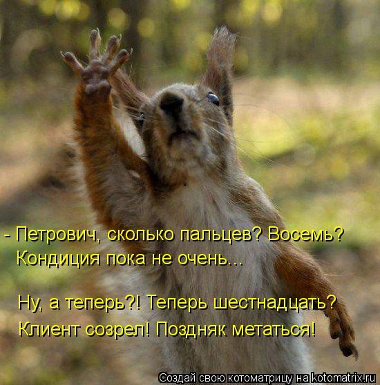 Котоматрица: - Петрович, сколько пальцев? Восемь?  Кондиция пока не очень... Ну, а теперь?! Теперь шестнадцать? Клиент созрел! Поздняк метаться!