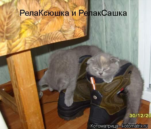 Котоматрица: РелаКсюшка и РелакСашка