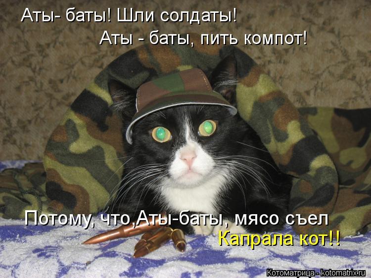 Котоматрица: Потому, что,Аты-баты, мясо съел Аты- баты! Шли солдаты! Аты - баты, пить компот! Капрала кот!!