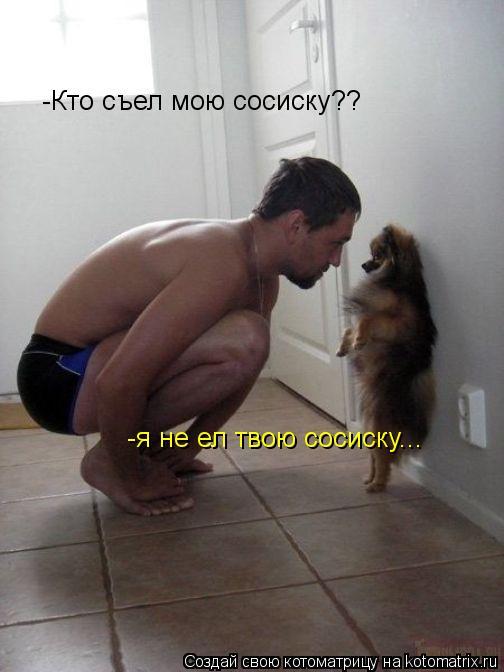 Котоматрица: -Кто съел мою сосиску?? -я не ел твою сосиску...